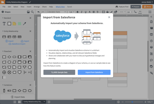 small resolution of import your salesforce schema