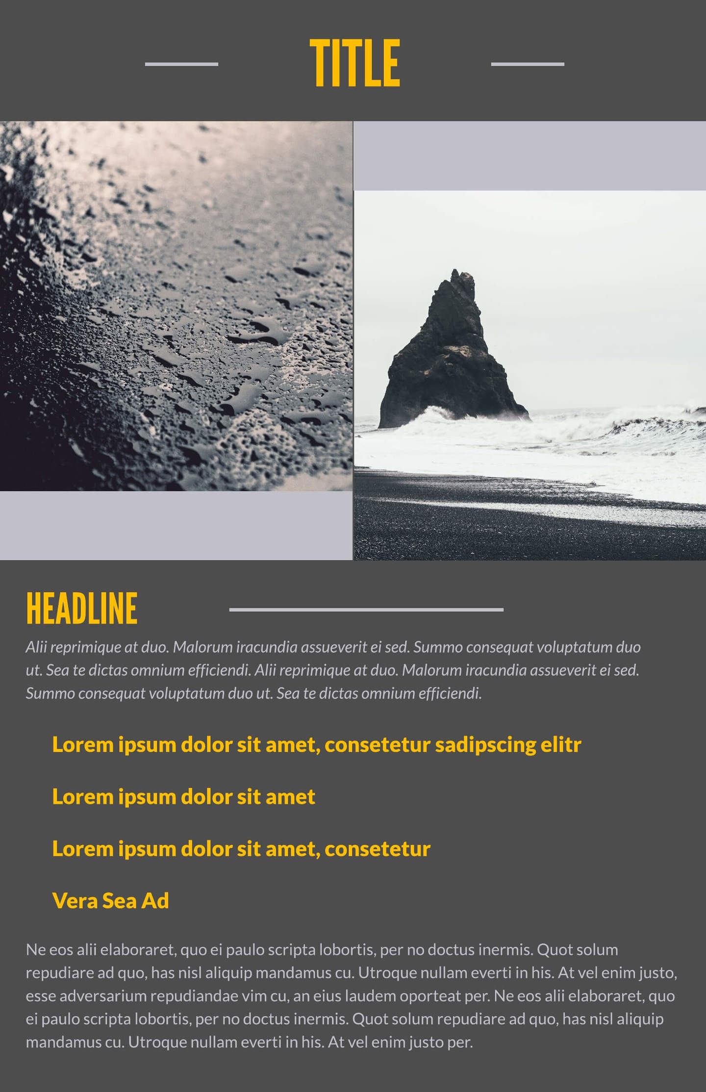 Free Leaflet Templates & Examples Lucidpress