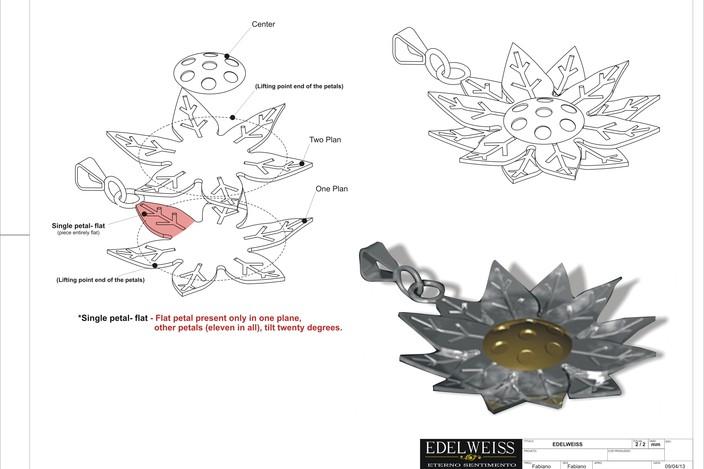 flower Edelweiss