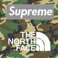 supreme_the_north-face