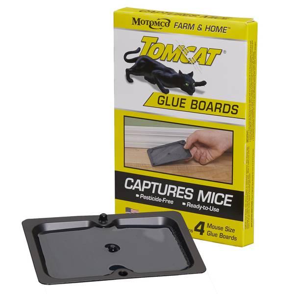 Tomcat Glue Boards for Mice