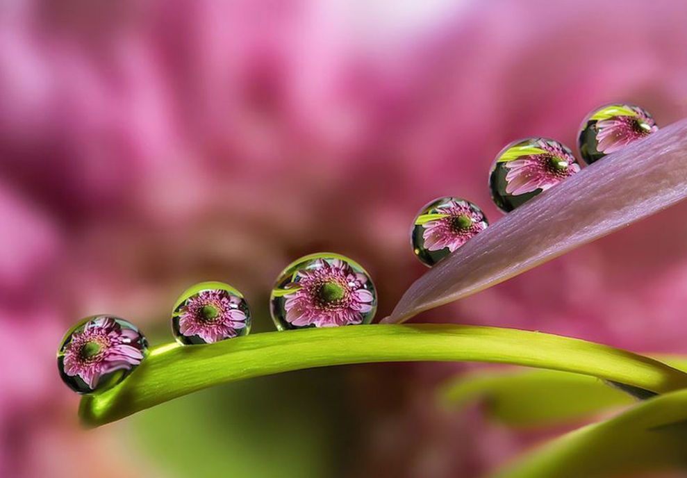 How To Fix Falling Wallpaper See A Beautiful World In Every Raindrop Now Beautifulnow