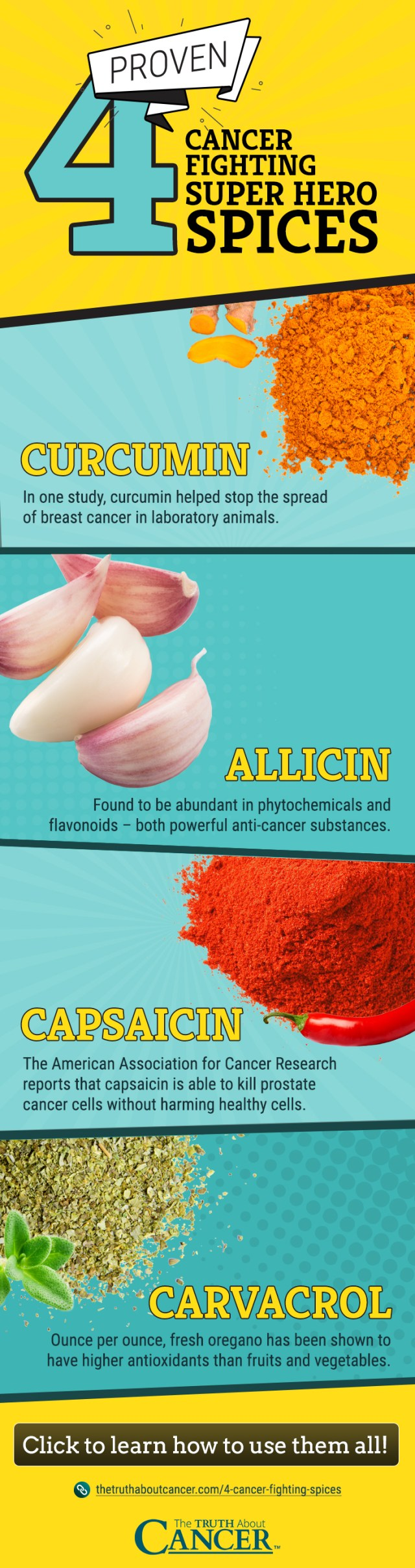 4 Cancer-Fighting Spices Infographic