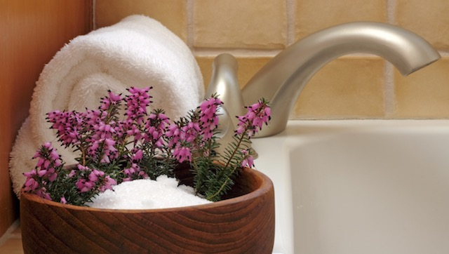 Epsom Salt Bath cures effectively dry skin on dogs also