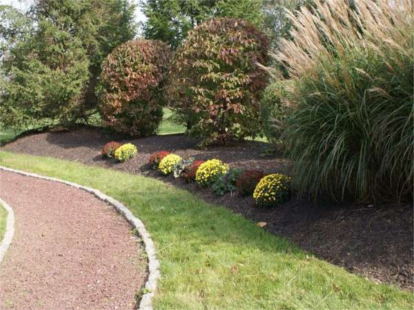 landscaping in blue bell lansdale