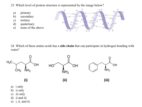 small resolution of which level of protein structure is represented by the image below h r a
