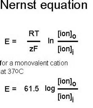 Solved: Nernst Equation, Substituted (20ºC) R: Gas Constan