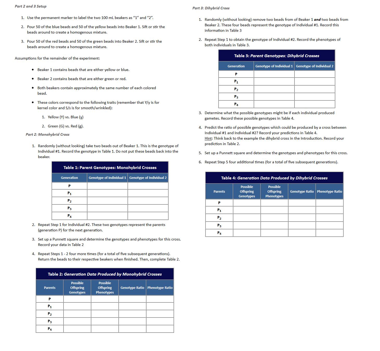 Punnet Square Homework Help