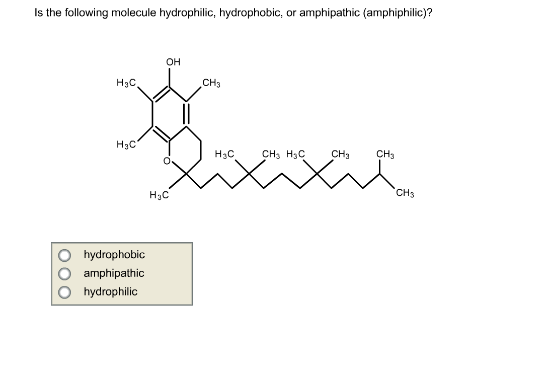 Solved: Is The Following Molecule Hydrophilic, Hydrophobic