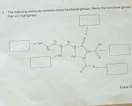 Solved: Name The Functional Groups That Are Highlighted. I