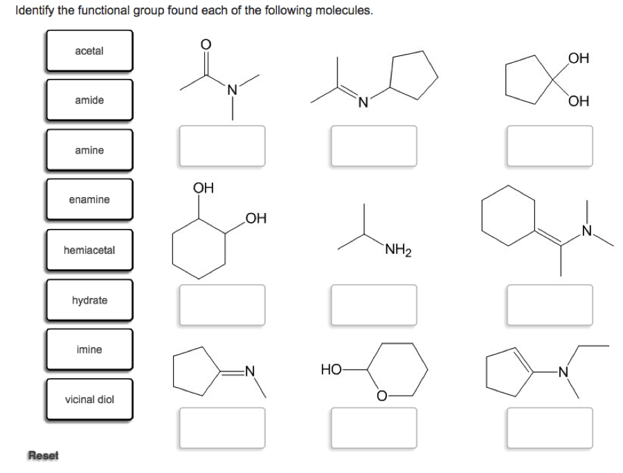Solved: Identify The Functional Group Found Each Of The Fo