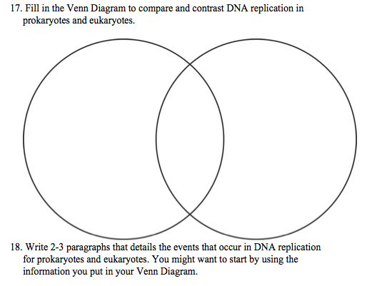 using a venn diagram to compare and contrast enzyme labeled solved 17 fill in the contra dna replication prokaryotes