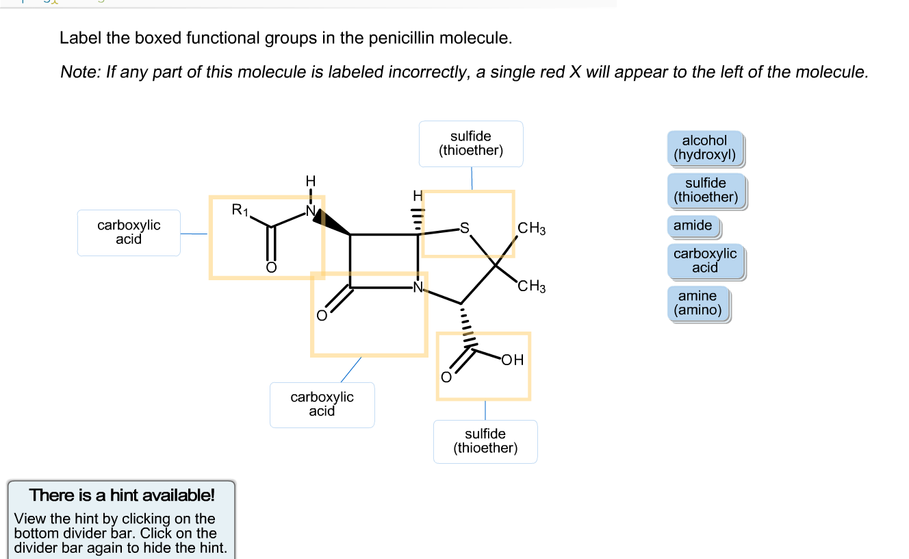 Solved Label The Boxed Functional Groups In The Penicilli