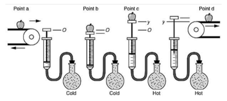 Solved: You Start With An Initial Gas Pressure Of , A