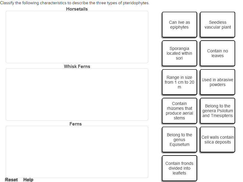 Solved: Classify The Following Characteristics To Describe