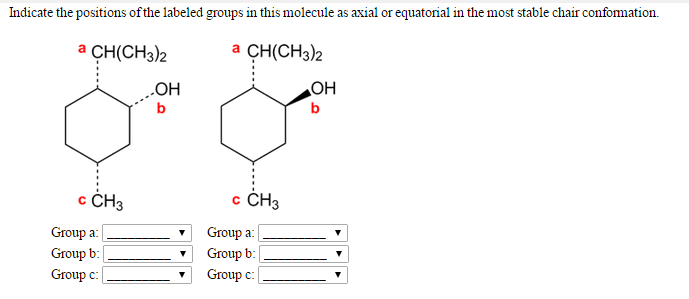 Solved: Indicate The Positions Of The Labeled Groups In Th