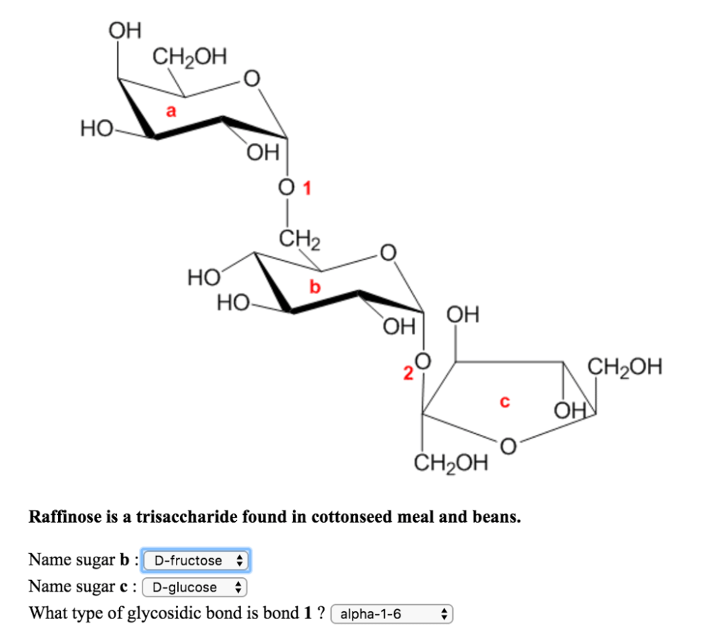 medium resolution of oh ch2oh ho oh o 1 ch2 ho ho oh oh ch2oh raffinose is a trisaccharide