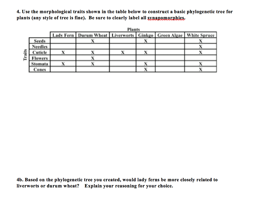 hight resolution of 4 use the morphological traits shown in the table below to construct a basic phylogenetic