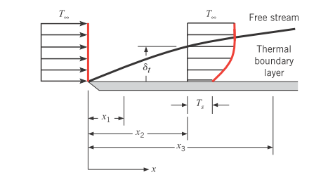 Solved: The Temperature Distribution Within A Laminar Ther