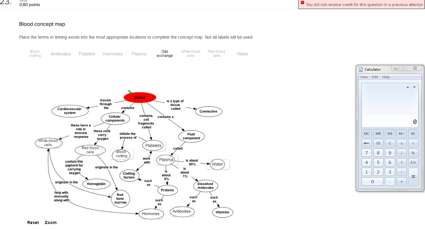 Blood Concept Map Answers