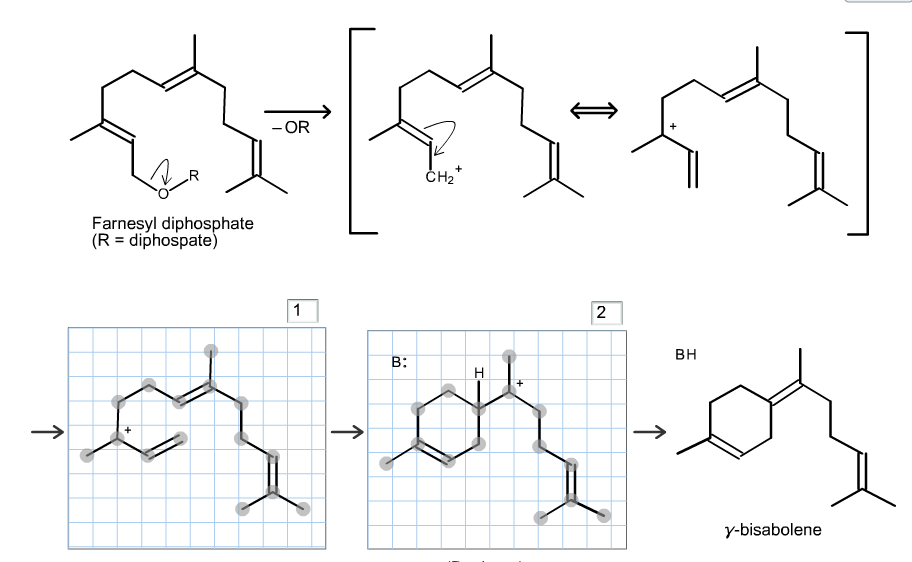 Solved: Propose A Mechanistic Pathway For The Biosynthesis