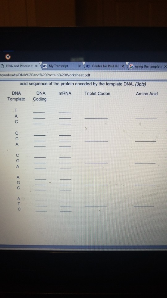 Solved: A And Protein V O My Transcript X × \ ? Grades For ...