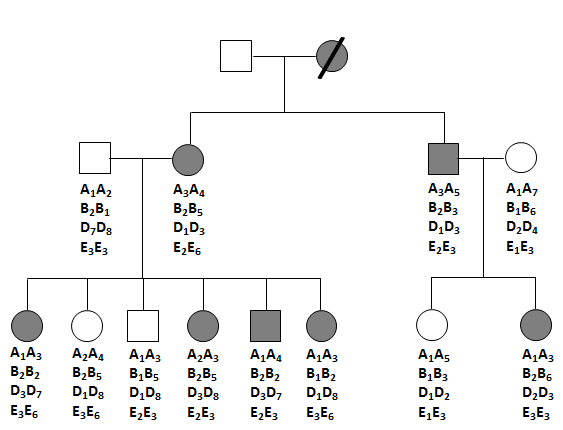 Solved: The Figure Below Shows The Pedigree Of A Family Fo
