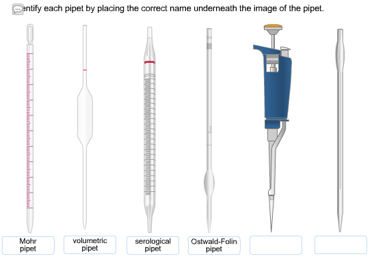 Solved: Identify Each Pipet By Placing The Correct Name Un