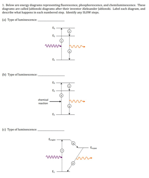 small resolution of below are energy diagrams representing fluorescence phosphorescence and chemiluminescence these diagrams
