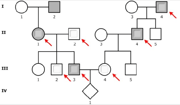 Solved: This Pedigree Shows The Inheritance Of A Rare, Aut