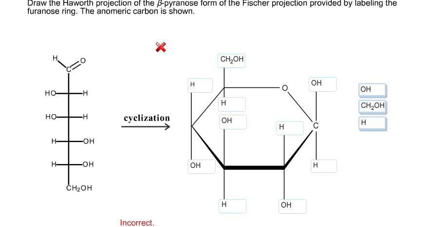 Solved: Draw The Haworth Projection Of The P-pyranose Form