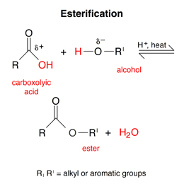 Solved: Draw The Ester That Is Formed From The Reaction Of