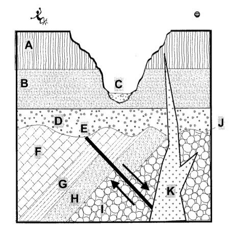 Solved: Sequence The Above Geologic Cross Section Tnto The