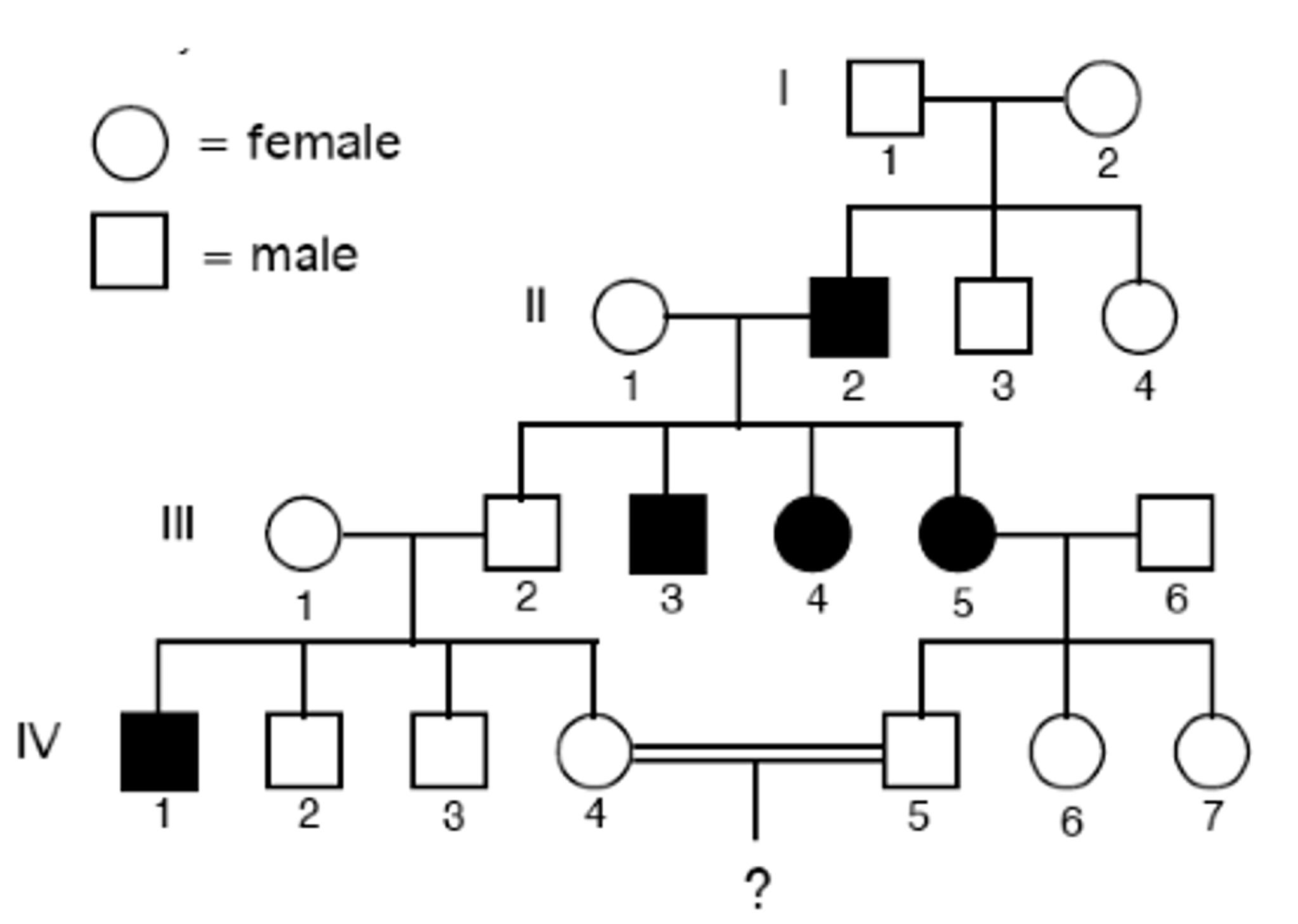 simple pedigree diagram 500 watt audio amplifier circuit solved for each below determine the most likely
