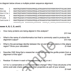 Sequence Diagram Questions And Answers Assembly Line Solved The Below Shows A Multiple Protein Sequenc