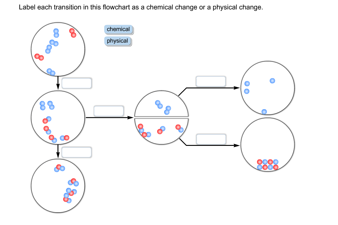 Solved: Label Each Transition In This Flowchart As A Chemi