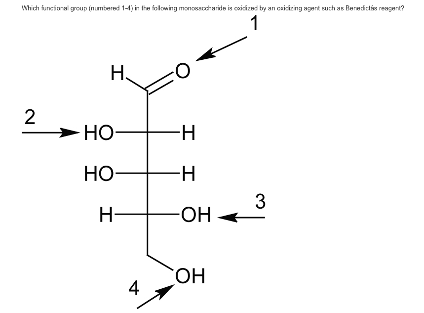 Solved: Which Functional Group (numbered 1-4) In The Follo