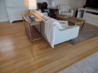 Bamboo Is The Hardwood Flooring Solution You Never Knew ...