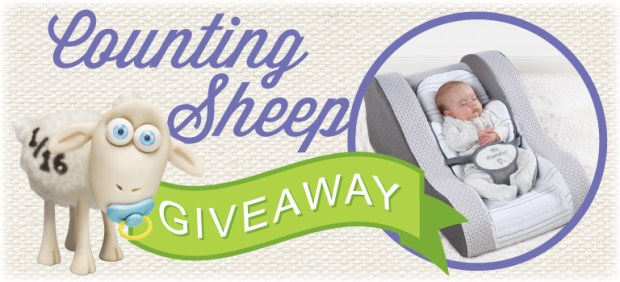Baby Safety Giveaway