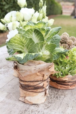 Succulent wedding favours will complement a rustic, woodsy theme