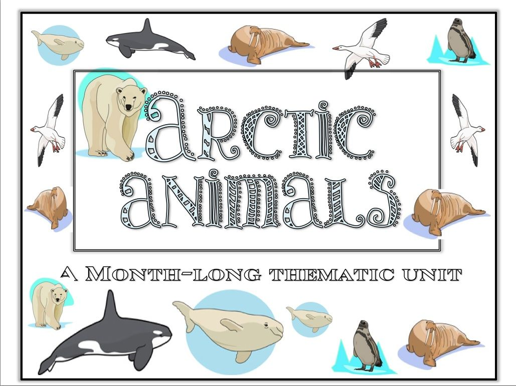 Arctic Animal Month Long Thematic Unit For Preschool