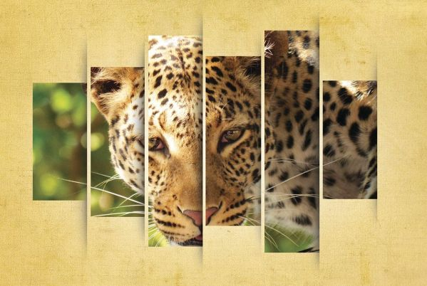 Leopard Display Poster Art Godserv Design