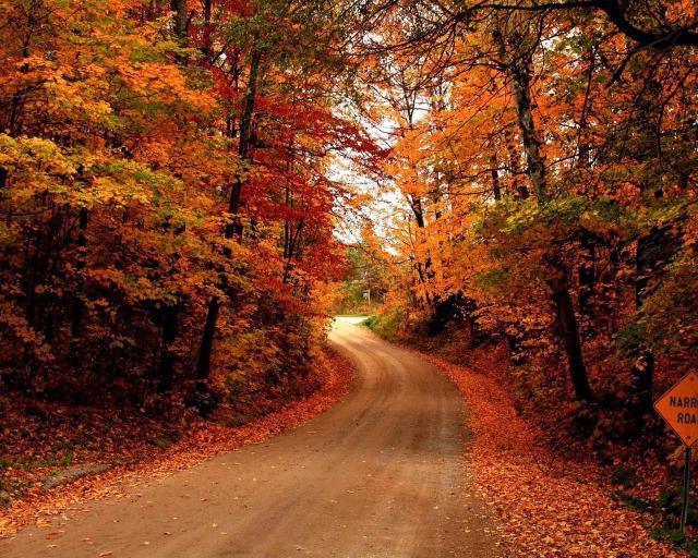 Fall Coastal Desktop Wallpaper 8tracks Radio Fall Leaves Winding Roads 17 Songs