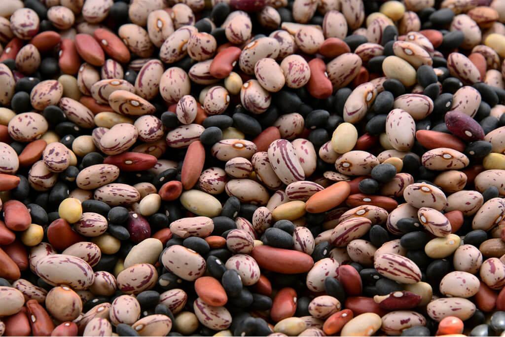 Vegan source of protein: lentils