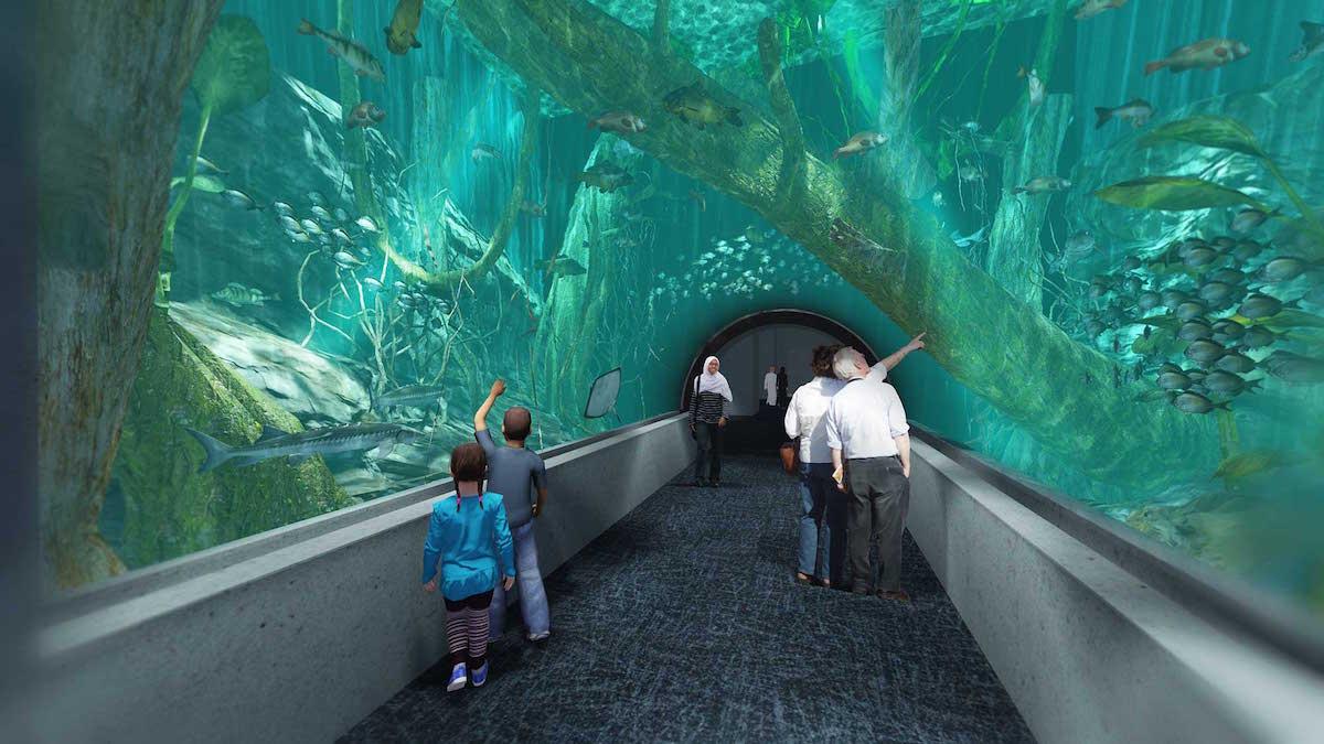 oman aquarium set to