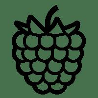 Raspberry Pi Light, Raspberry, Free Engine Image For User