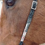 Seed Beaded Horse Headstall Sold By C4 Tack N Jewelry On Storenvy