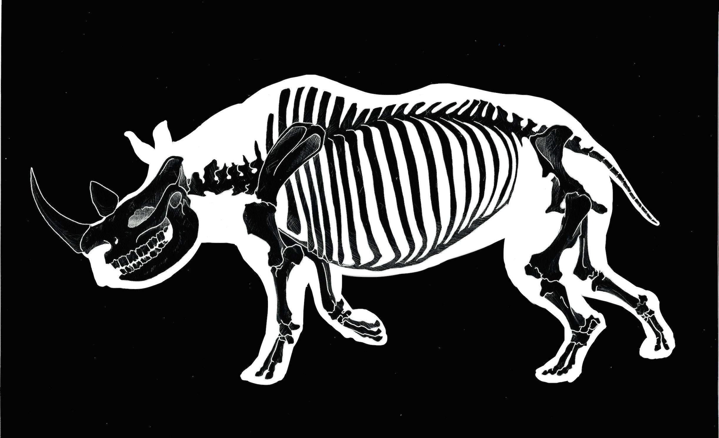 Rhino Skeleton T Shirt Grunge Goth Punk Taxidermy