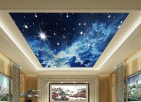 21 Inspiring Custom Photo Ceilings by CEILTRIM Inc.