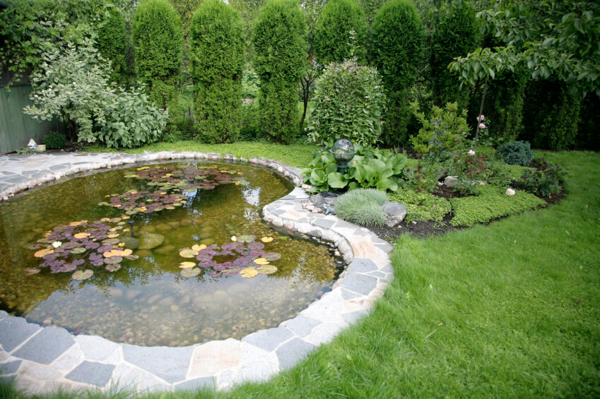 37 Backyard Pond Ideas & Designs (pictures